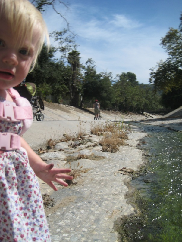 Lower Arroyo Seco tributary