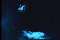 vlcsnap-2015-12-27-23h42m34s777